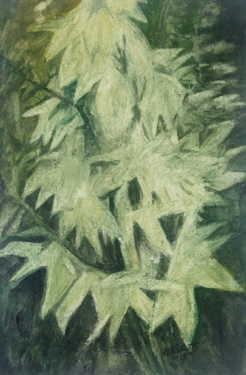 Hans Brass | Hosta Flowers | 1955 | watercolour | signed and dated | 46 x 31