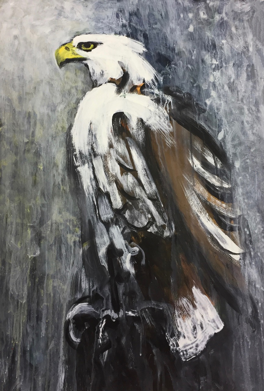 Dieter Finke | Bald Eagle | about 2000 | acrylic on paper | 101 x 72 cm