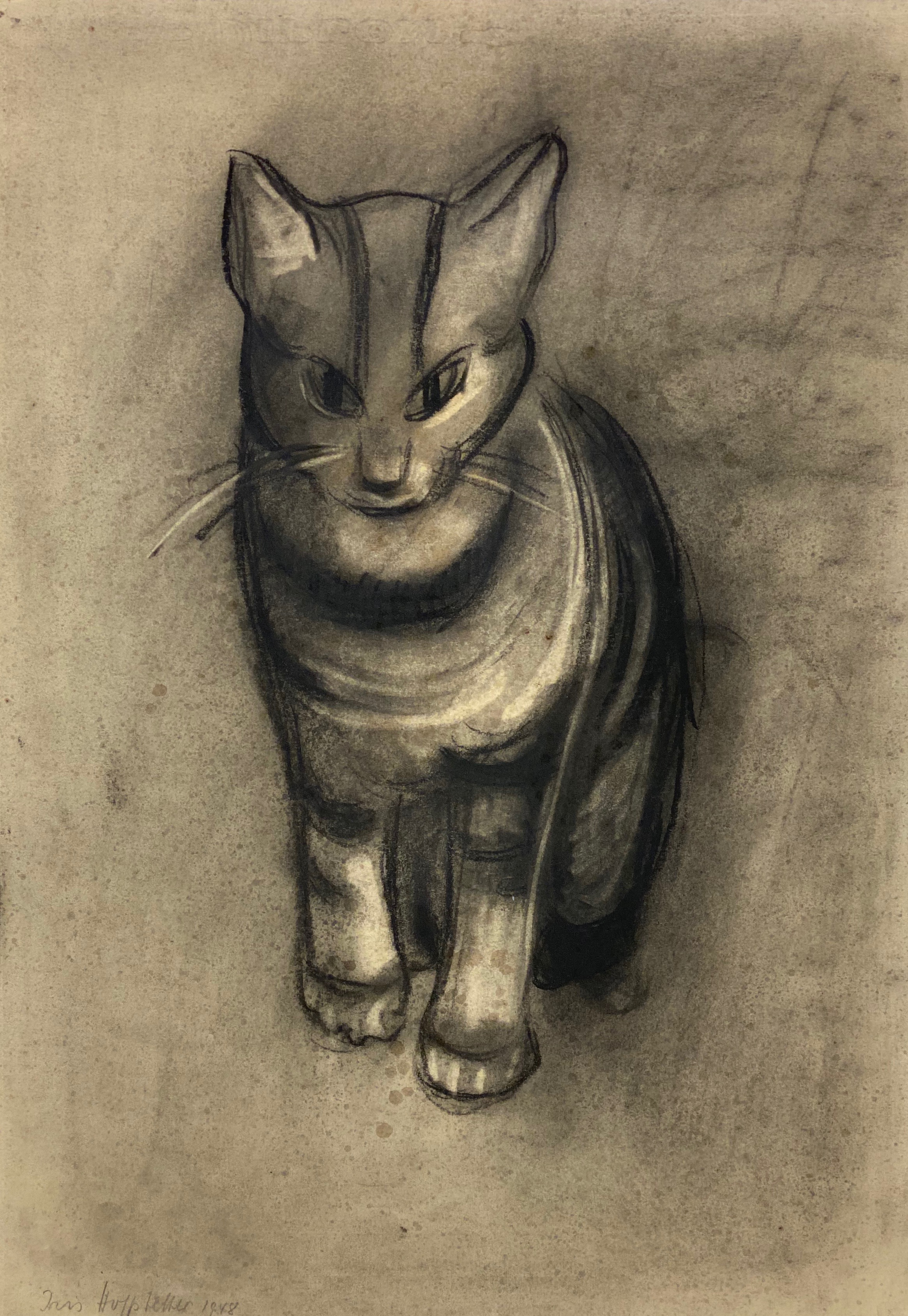 Iris Hahs-Hoffstetter | Sitting Cat | 1948 | charcoal and ink glazed | signed and dated | 43 x 30.5 cm