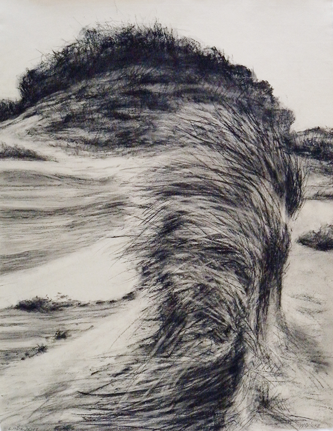 Wolfgang Reinke | In the Dunes | 2011 | charcoal | signed, dated and signed | 69 x 49 cm